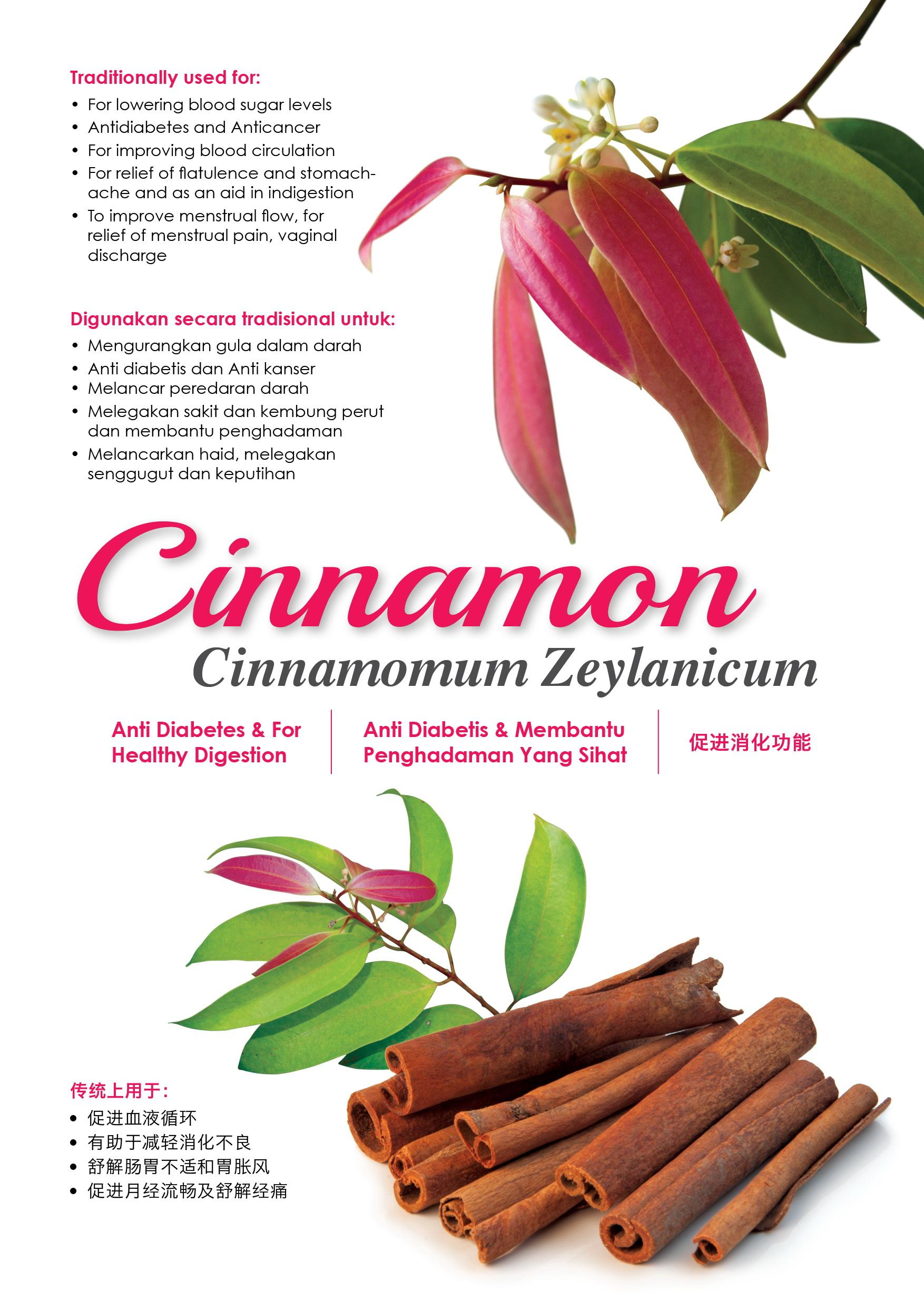 Poster_cinnamon_yoe1-ra.jpg?148421803375