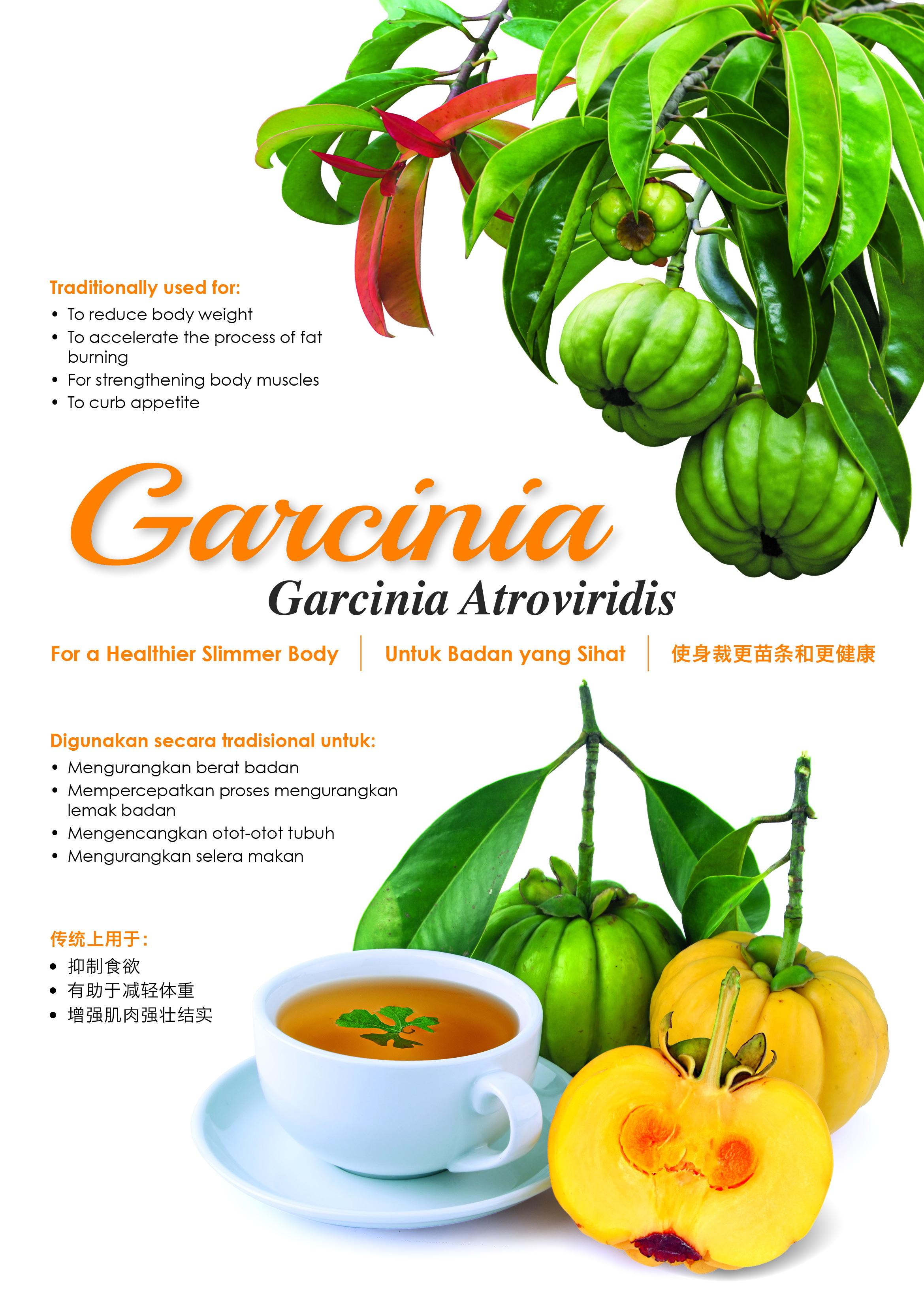 Poster_garcinia_s5pr-wm.jpg?148413267577